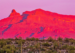 Ajo Mountains at Sunset, Organ Pipe Cactus National Monument, Sonoran Desert, Arizona