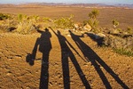 Hiker Shadows on Ryan Mountain Summit, Joshua Tree National Park, Twentynine Palms, California