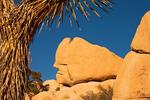 Trojan Rock Erosional Formation, Quartz Monzonite Granite, Hidden Valley, Joshua Tree National Park, Twentynine Palms, California