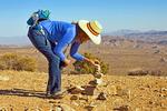Woman Building Rock Cairn, Ryan Mountain, Joshua Tree National Park, Twentynine Palms, California