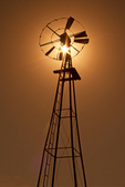 Windmill, Wall Street Mill Trail, Joshua Tree National Park, Twentynine Palms, California