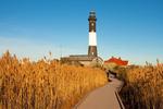 Wooden Boardwalk and Phragmites, Fire Island Light, 19th Century Lighthouse, Fire Island National Seashore, Long Island, New York