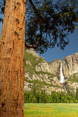 Yosemite Falls, Yosemite Valley, Yosemite National Park, California