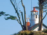 Battery Point Light and Museum, 19th Century Lighthouse, Crescent City, California