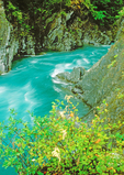 Goblins Gate and the Elwha River, Olympic National Park, Washington