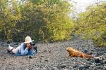 Photographing a Land Iguana, Urbina Bay, Isabela
