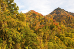 Autumn Foliage on the Chimney Tops, Great Smoky Mountains National Park, Tennessee