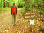 Hiker on Middle Prong Trail, Great Smoky Mountains National Park, Tennessee