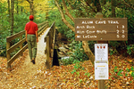 Hiker on Wooden Footbridge and Trail Sign, Alum Cave Bluffs Trail, Great Smoky Mountains National Park, Tennessee