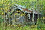 Abandoned Cabin, Elkmont Historic District, Millionaires Row, Little River Trail, Great Smoky Mountains National Park, Tennessee