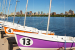 Sailboats and the Boston Skyline, Charles River, Boston, Massachusetts