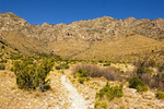 Smith Springs Trail and the Guadalupe Mountains, Guadalupe Mountains National Park, Chihuahuan Desert, Texas