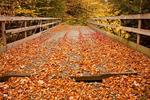 Wooden Bridge, Georgiana Falls Trail, Harvard Brook, Franconia Notch State Park, White Mountains, New Hampshire