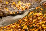Georgiana Falls Trail Cascade, Harvard Brook, Franconia Notch State Park, White Mountains, New Hampshire