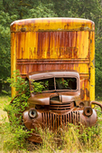 Old Truck, Kestner Homestead, Quinault Rainforest, Olympic National Park, Washington