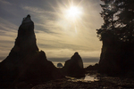 Silhouetted Seastacks and Rocky Coast, Cape Alava Loop, Ozette Triangle, Olympic National Park, Washington