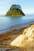 Beach and Tskawahyah Island, Cape Alava Loop, Ozette Triangle, Olympic National Park, Washington