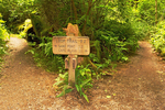 Trail Sign, Cape Alava Loop, Ozette Triangle, Olympic National Park, Washington