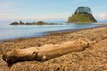 Driftwood on Beach, Tskawahyah Island, Cape Alava Loop, Ozette Triangle, Olympic National Park, Washington