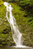 Madison Falls, Elwha River, Olympic National Park, Washington