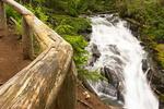 Madcap Falls, Paradise River, Carter Falls Trail,Wonderland Trail, Mount Rainier National Park, Washington
