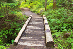Wooden Footbridge, Carter Falls Trail, Wonderland Trail, Mount Rainier National Park, Washington