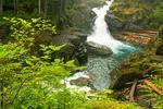 Silver Falls, Ohanepecosh River, Mount Rainier National Park, Washington