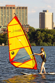 Windsurfer on Charles River, Boston Skyline, Boston, Massachusetts
