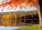 Mauserts Pond, Clarksburg State Park, Mohawk Trail, Berkshires, Massachusetts