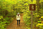 Hiker on Coppermine Trail, White Mountains, Franconia, New Hampshire
