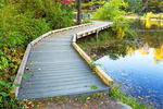 Wooden Boardwalk at Pike's Pond, Pleasant Valley Wildlife Sanctuary, Mass Audubon, Lenox, Massachusetts
