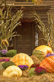 House on Main Street with Pumpkins, 19th Century Architecture, Historic Deerfield, Deerfield, Massachusetts