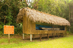 Dugout Canoe and Native American Mural, Collier-Seminole State Park, Naples, Florida