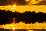 Sunset at Great Meadows National Wildlife Refuge, Concord, Massachusetts