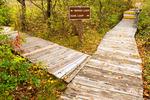 Trail Junction and Trail Sign in Autumn, Hellcat Swamp Trail, Parker River National Wildlife Refuge, Plum Island, Newburyport, Massachusetts