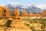 Garden Of Eden and the La Sal Mountains, Erosional Pinnacles and Cliffs, Arches National Park, Colorado Plateau, Moab, Utah