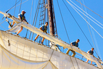 Sailors on Rigging Trimming Sails, Charles Morgan Whaling Ship, Mystic Seaport, Museum of America and the Sea, Mystic, Connecticut
