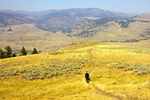 Hiking in the Lamar Valley, Absaroka Mountains, Yellowstone National Park, Wyoming