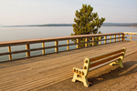 Bench and Overlook, Yellowstone Lake, Yellowstone National Park, Wyoming