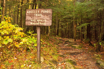 Trail Sign, Greeley Ponds Trail, Kancamagus Highway, White Mountains, New Hampshire