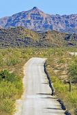Ajo Mountain Drive, Organ Pipe Cactus National Monument, Sonoran Desert, Arizona
