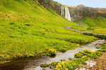 Stream and Seljalandsfoss Waterfall, Seljalands River, Iceland