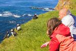 People Observing puffins Latrabjarg Cliffs, Westfjords, Iceland