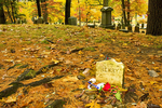 Henry David Thoreau Grave in Autumn, Sleepy Hollow Cemetery, Concord, Massachusetts