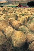 Barn and jumbled hay bales