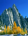 Prusik Peak and alpine larch