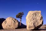 Erratic boulders at Tioga Pass