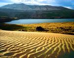 Sand dunes along Columbia River