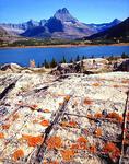 Swiftcurrent Lake and lichened limestone