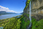 Eagles and Columbia River Gorge from Mist Falls